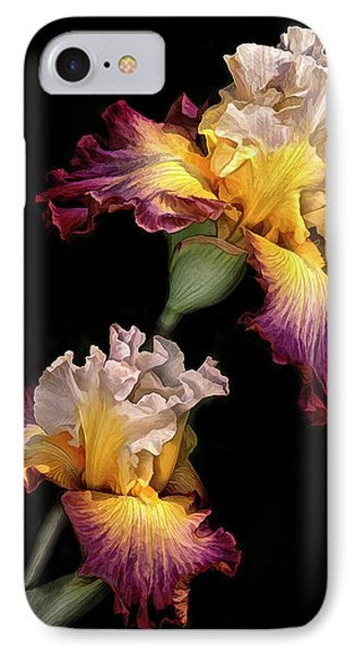 Tricolor Iris Pair IPhone Case by Dave Mills