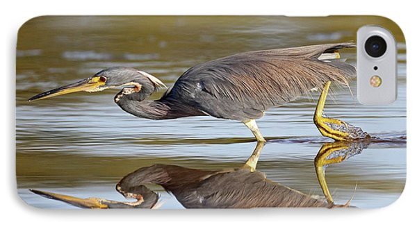 Tricolored Heron IPhone Case by Brian Magnier