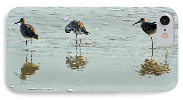 Trio Of Willets On Jekyll IPhone Case by Bruce Gourley