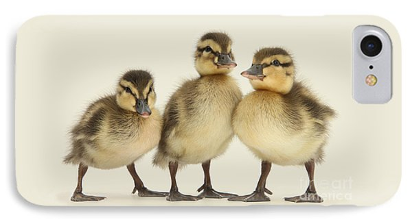 Triple Ducklings IPhone Case