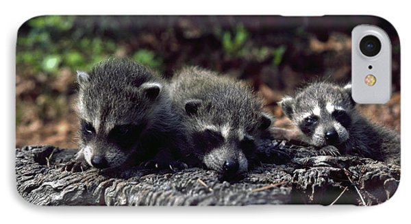 Triplets IPhone Case by Sally Weigand