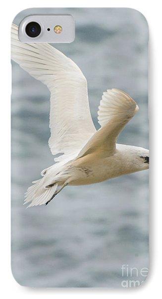 Tropic Bird 2 IPhone 7 Case by Werner Padarin