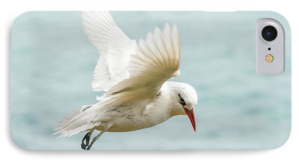Tropic Bird 4 IPhone Case