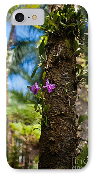 Tropical Beauty IPhone Case by Mike Reid