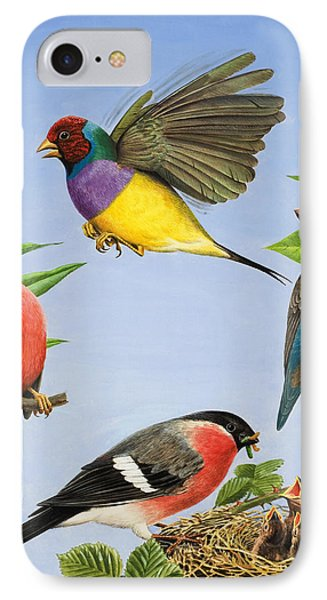 Tropical Birds IPhone Case by RB Davis