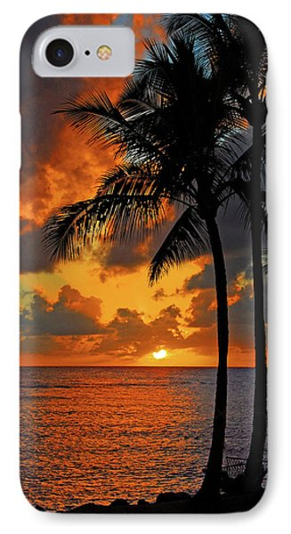 Tropical Nights  Phone Case by Lynn Bauer
