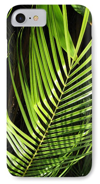 IPhone Case featuring the photograph Tropical Palm by Carol Sweetwood