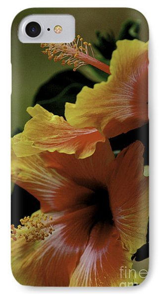 Tropical Punch IPhone Case by Lori Mellen-Pagliaro