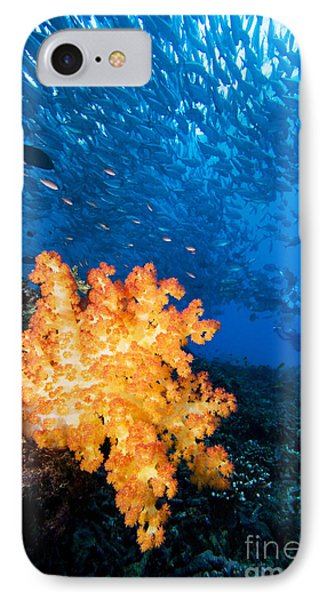 Tropical Reef Scene Phone Case by Dave Fleetham - Printscapes
