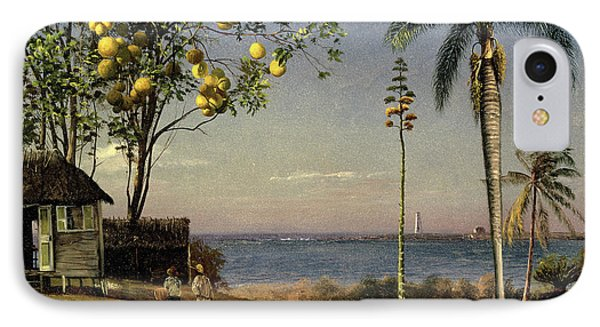 Tropical Scene IPhone Case by Albert Bierstadt