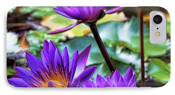 Tropical Water Lilies IPhone Case by Karen Lewis