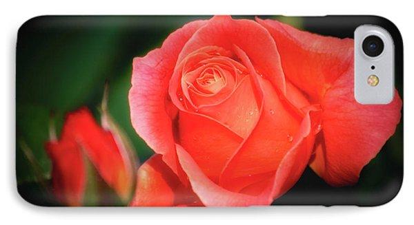 Tropicana Rose IPhone Case by Albert Seger