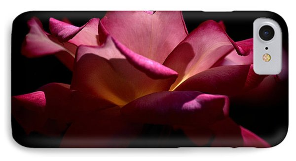 IPhone Case featuring the photograph True Beauty by Lori Seaman
