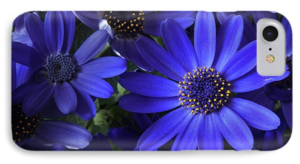 True Blue Baby IPhone Case by Dorothy Lee