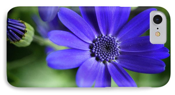 True Blue In The Garden Shadows IPhone Case by Dorothy Lee