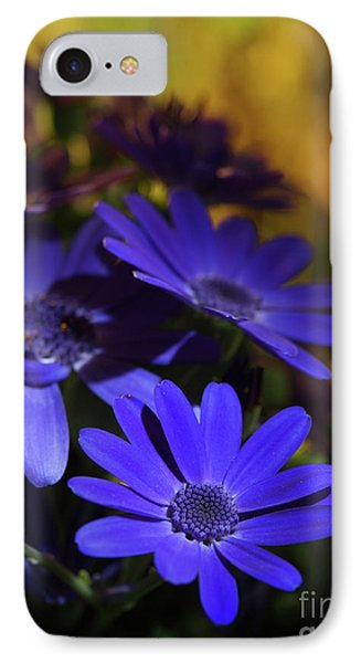 True Blue In The Late Afternoon Sunlight 2 IPhone Case by Dorothy Lee