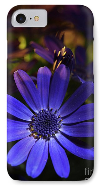 True Blue In The Late Afternoon Sunlight 3 IPhone Case by Dorothy Lee