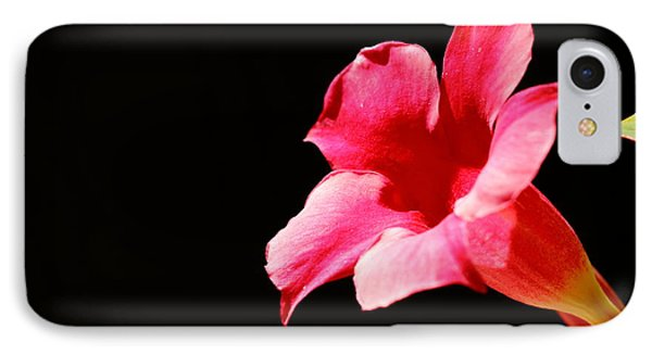 IPhone Case featuring the photograph Trumpet by Richard Patmore