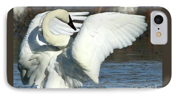 Trumpeter Swan IPhone Case by Paula Guttilla