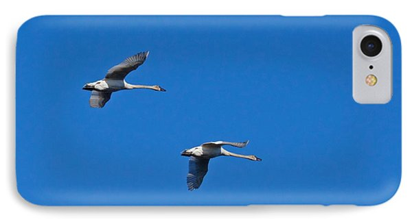 IPhone Case featuring the photograph Trumpeter Swans 1726 by Michael Peychich