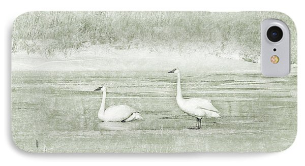 IPhone Case featuring the photograph Trumpeter Swan's Winter Rest Green by Jennie Marie Schell