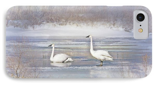 IPhone Case featuring the photograph Trumpeter Swan's Winter Rest by Jennie Marie Schell