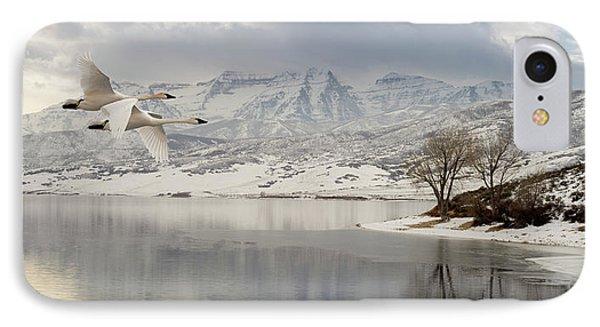 Trumpeter Swans Wintering At Deer Creek IPhone Case by TL Mair