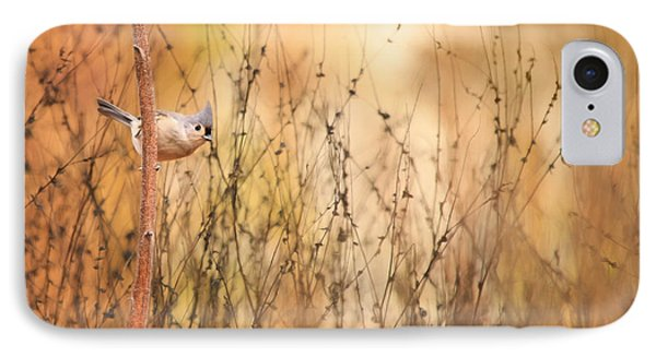 Tufted Titmouse IPhone Case by Lori Deiter