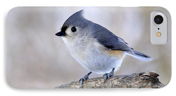 Tufted Titmouse On Dogwood 2 IPhone Case by Thomas R Fletcher