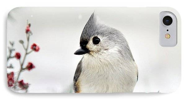 Tufted Titmouse Square Phone Case by Christina Rollo