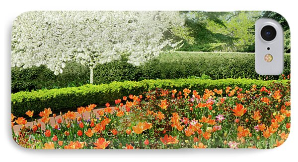 IPhone Case featuring the photograph Tulip Cafe by Diana Angstadt