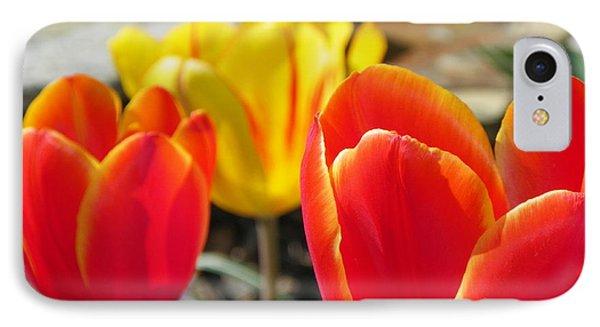 Tulip Celebration Phone Case by Karen Wiles
