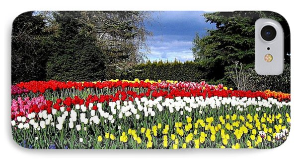 Tulip Country IPhone Case by Will Borden