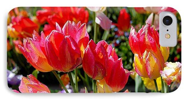 Tulip Garden IPhone Case by Rona Black