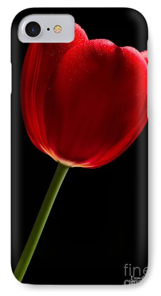 IPhone Case featuring the photograph Red Tulip No. 2 By Flower Photographer David Perry Lawrence by David Perry Lawrence