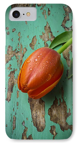 Tulip On Old Green Table IPhone Case by Garry Gay