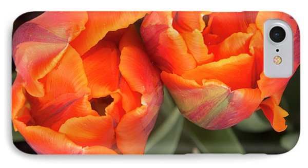 Tulip Pair IPhone Case by Jean Noren