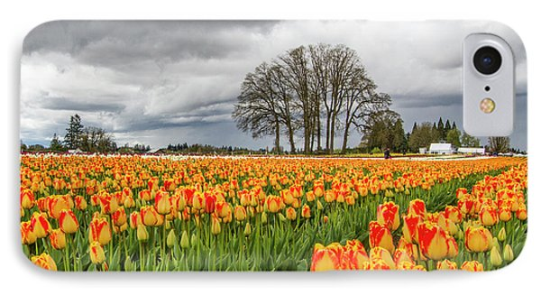 Tulip Rows IPhone Case by Jean Noren