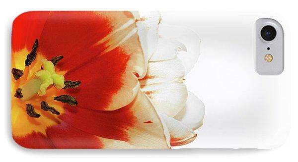 Tulip Statement IPhone Case by Afrodita Ellerman