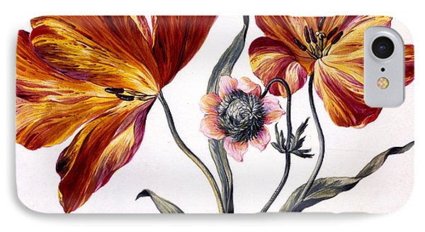Tulips And Anenome IPhone Case by Claude Aubriet