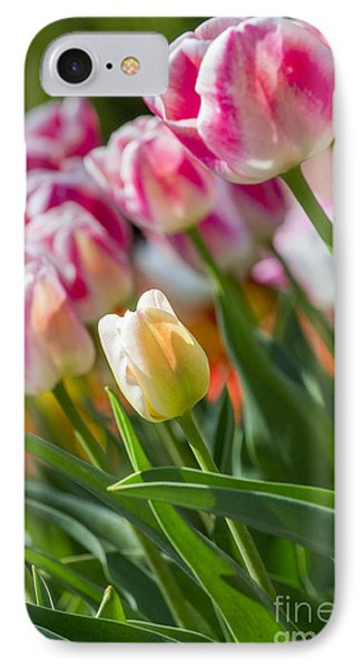 IPhone Case featuring the photograph Tulips by Angela DeFrias