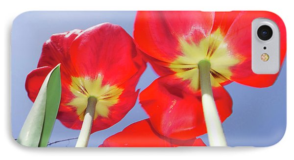 IPhone Case featuring the photograph Tulips by Elvira Ladocki