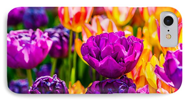 IPhone Case featuring the photograph Tulips Enchanting 42 by Alexander Senin