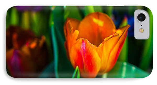 IPhone Case featuring the photograph Tulips Enchanting 44 by Alexander Senin