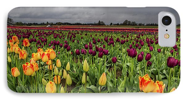 Tulips In A Storm IPhone Case by Jean Noren