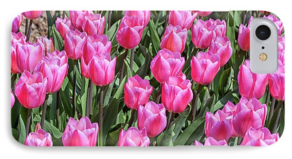 IPhone Case featuring the photograph Tulips In Pink Color by Patricia Hofmeester