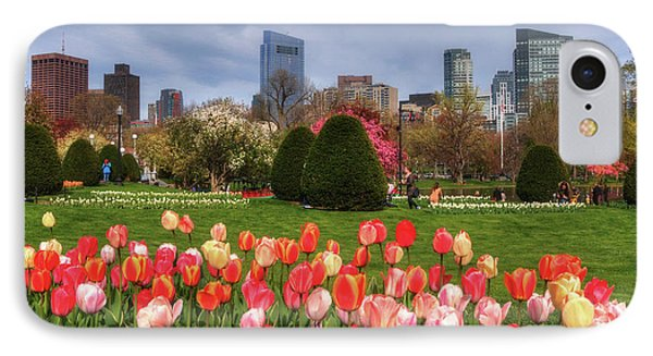 Tulips In The Boston Public Garden In Spring IPhone Case by Joann Vitali