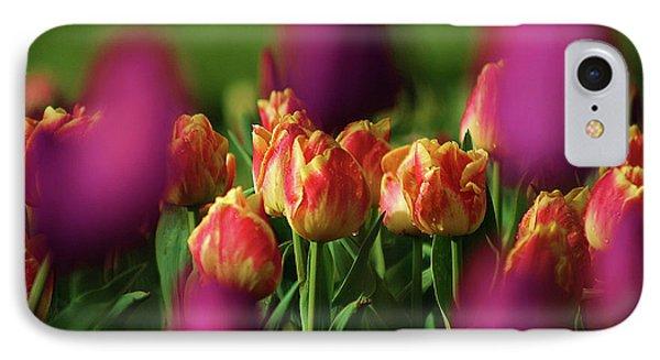 Tulips IPhone Case by Martina Fagan