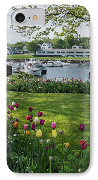Tulips On Perkins Cove IPhone Case by Joseph Smith