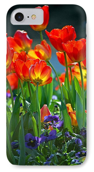 Tulips IPhone Case by Robert Meanor